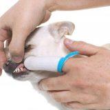 Børst nemmere tænder på din hund med en fingertandbørste